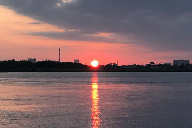 【利根川シーバス 2020年6月中旬】平日朝活で利根川河口堰に行ってまいりました!