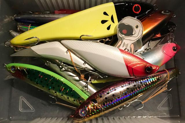 【東京湾ボートシーバス 2020年10〜11月】ハイシーズンのボートシーバス釣行をまとめてお届けします!